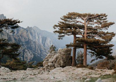 Korsika_Nationalpark (1 von 1)